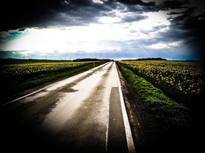 Jdete svou cestou?
